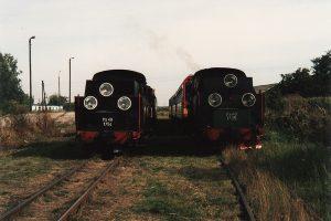 Dwa pociągi parowe na stacji w Witkowie.