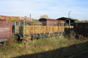 Zgromadzone wagony towarowe w Karczmirskach - letniak platforma.