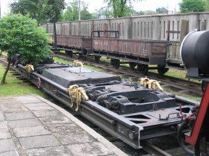 Wagon transporter Tddyyhp.
