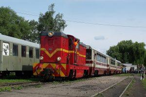 Rogów Towarowy Wąskotorowy - pociąg prowadzony Lxd2-265.