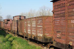 Rogów Wąskotorowy Towarowy -  wagon Wddxh.