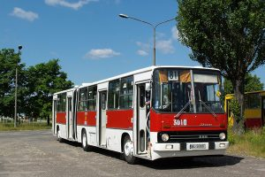 Feniks - #BV99.