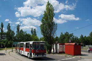 Karpacka - #BV99.