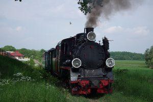 Px48-1919 podczas fotostopu w Żelazkowie.